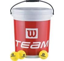 Team trainer 72ks.jpg