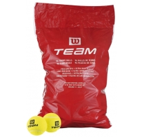 Team trainer 96ks.jpg