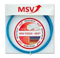 MSV Focus Hex 12m modrá.jpg