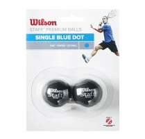 staff squash 2 ball blue.jpg